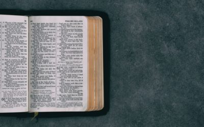 The Importance of Bible Reading